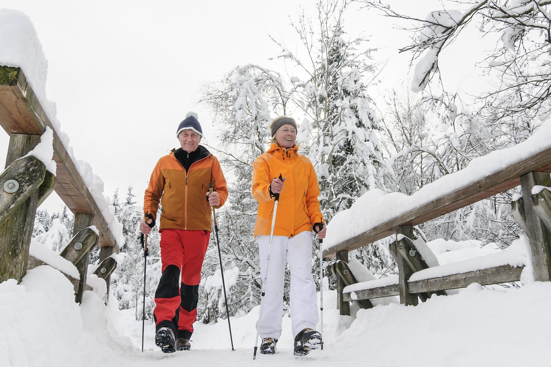 Winterwandern am Chiemsee