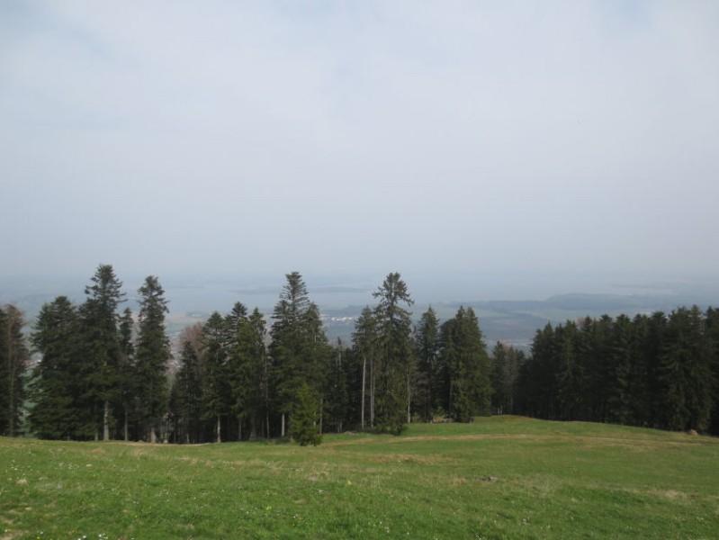 Chiemseeblick