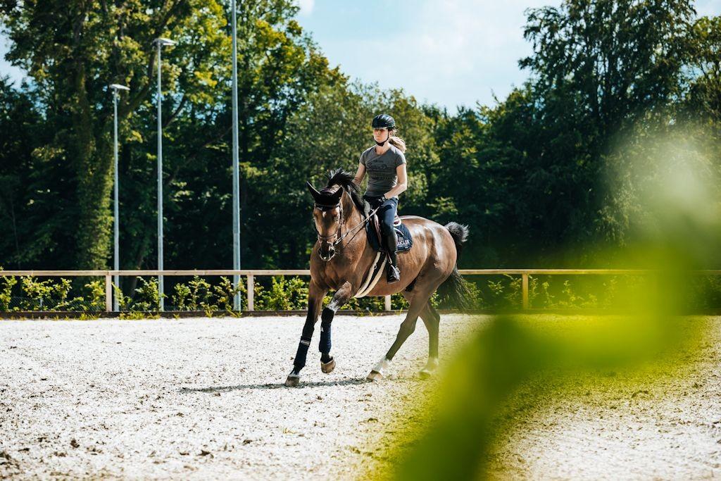 Pferdefestival Chiemsee