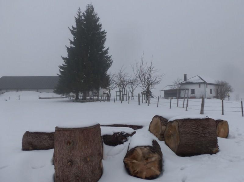 Hofalm verschneit