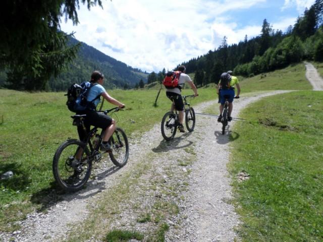 Bergradler Eschelmoos