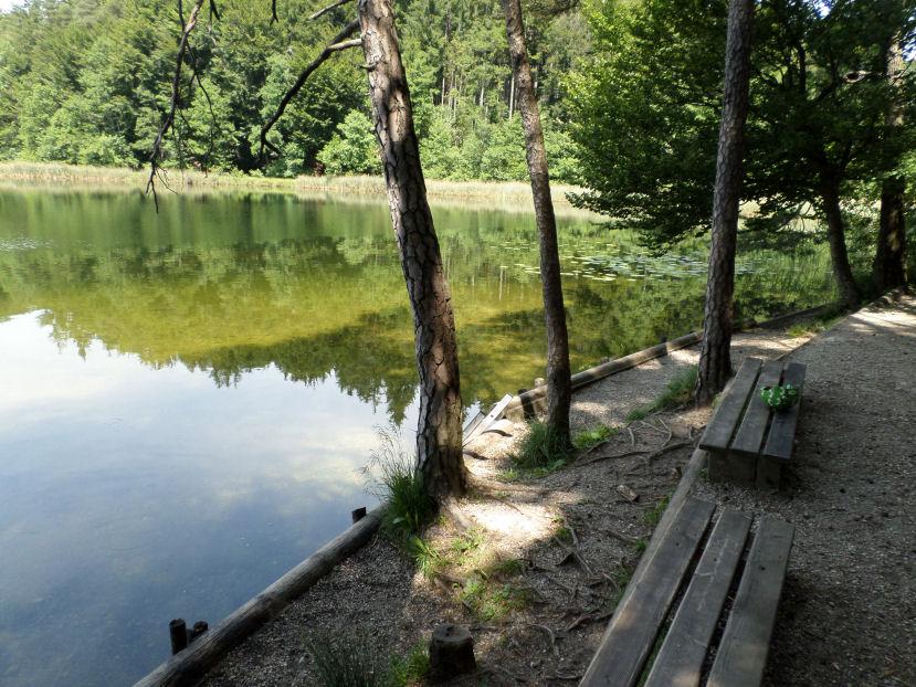 Der ruhig gelegene Schlosssee