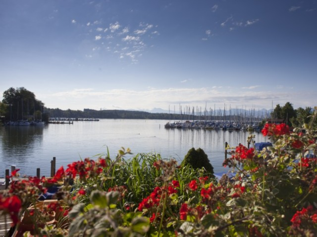 Ausblick Sommer See